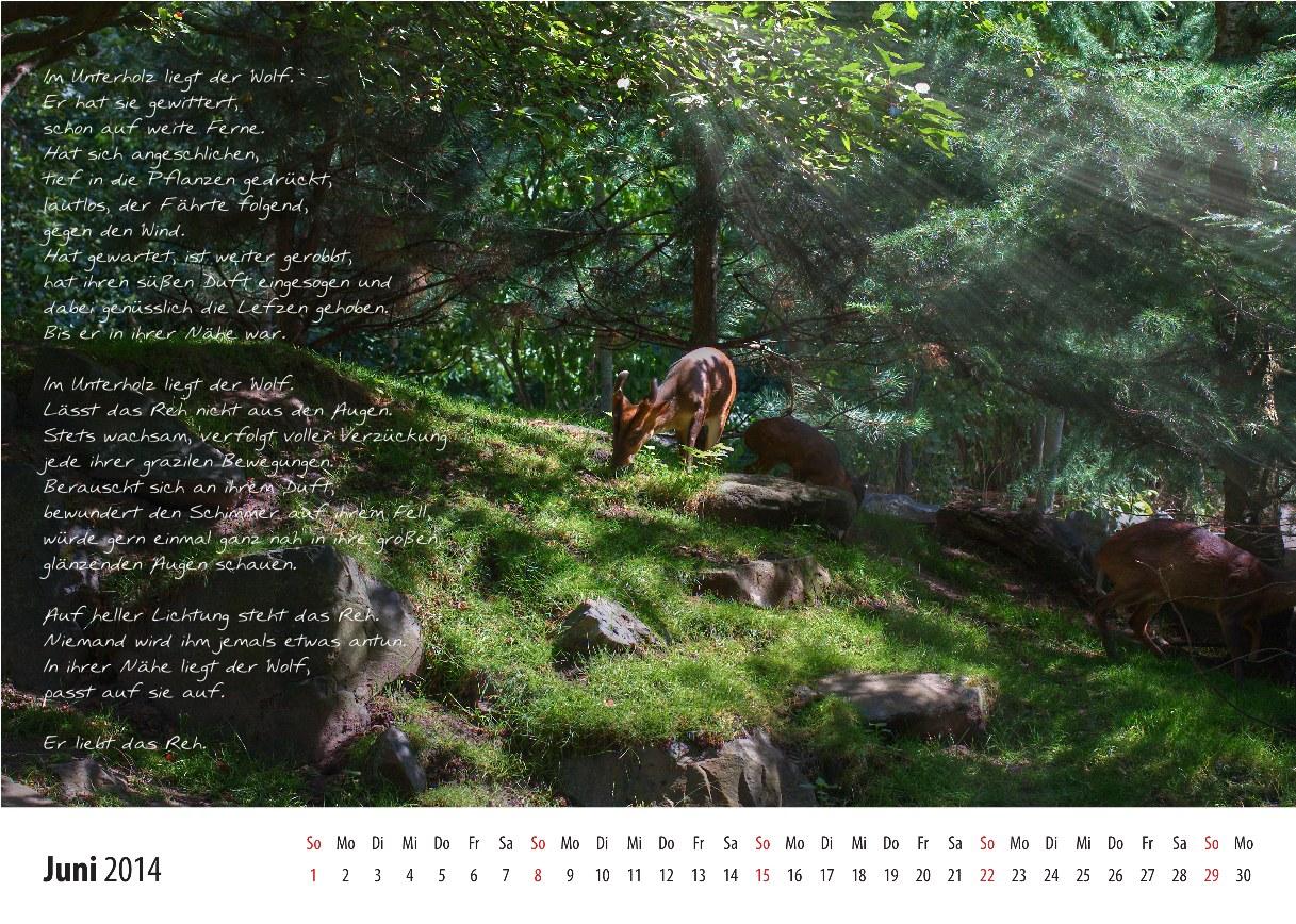 Kalender_2014_06