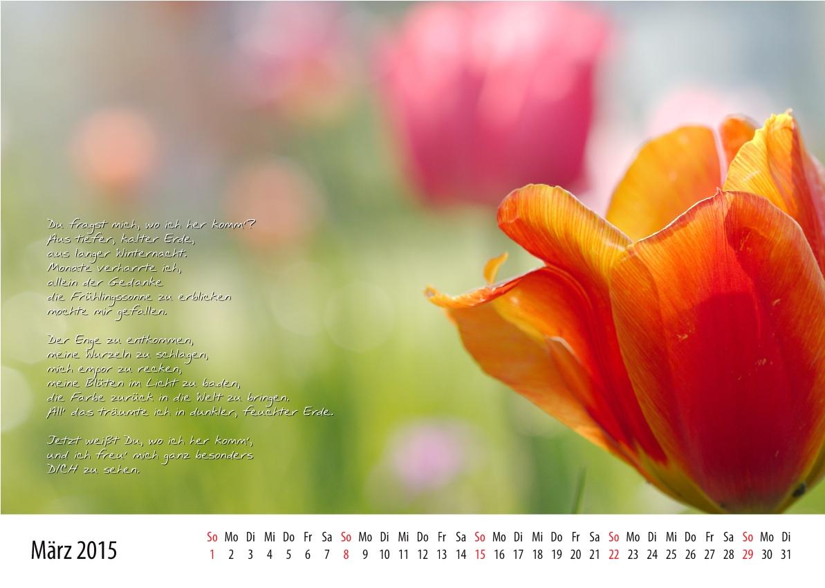 Kalenderblatt März